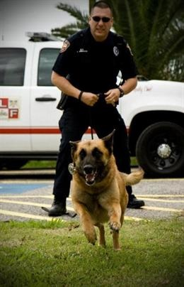 K-9 Teams Stay Busy During Practice Exercises
